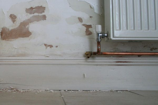 Rising Damp patches on internal walls
