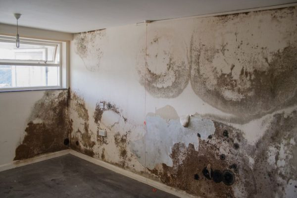 damp proofing damage on the walls of house